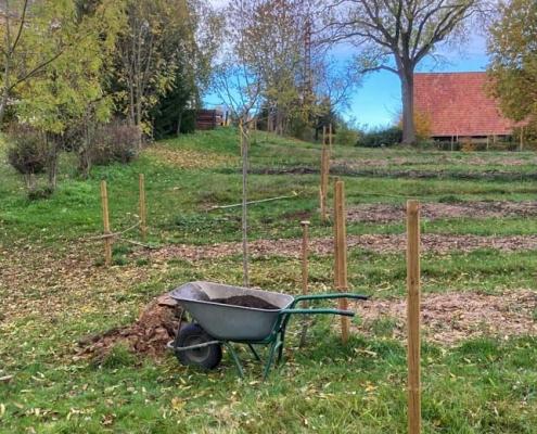 Projekt Garten Schmiedelandhaus